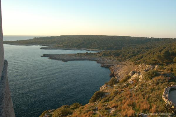 costa porto selvaggio